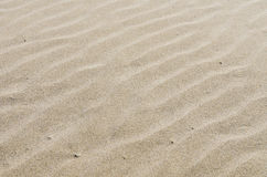 Rippled sandy beach for background Stock Images