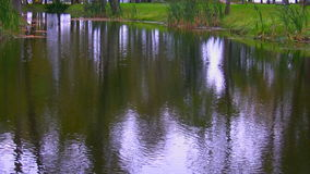 Rippled surface of pond or river stock footage
