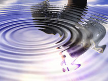 Ripples - 17 Stock Images