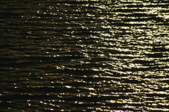 Ripples Royalty Free Stock Image