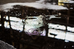 ripples imagem de stock royalty free