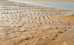 Ripples on the beach Royalty Free Stock Images