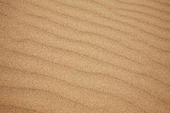 Ripples in beach sand Royalty Free Stock Image