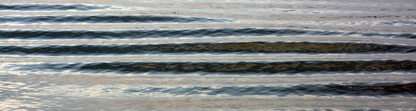Ripples on calm water. Panoramic Royalty Free Stock Photos