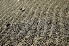 Ripples in dry sand Stock Photo