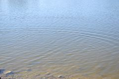 Ripples in the Lake Water stock image