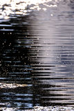 Ripples in lake water. Sunlight reflection and ripples in lake water Royalty Free Stock Photo
