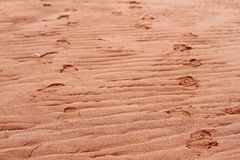 Ripples in red beach sand Stock Photo