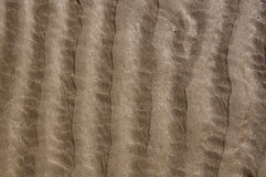 Ripples in the Sand Stock Photography