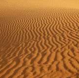 Ripples in the sand. In the Coral Pink Sand Dunes Park, Utah lit by the setting sun Stock Image