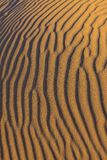 Ripples in the sand Royalty Free Stock Image