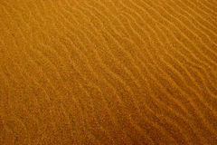 Ripples in the sand. On the shore of San Francisco Bay, California Royalty Free Stock Photos