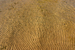 Ripples in the sand Royalty Free Stock Photos