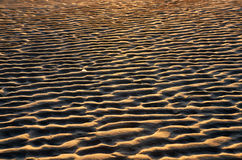 ripples of sand on beach Royalty Free Stock Photography