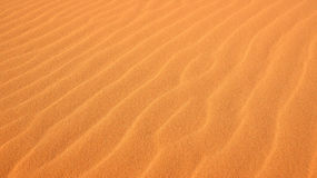 Ripples in the Sand at Coral Pink Sand Dunes State Park Stock Photography