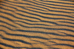 Ripples on a Sand Dune Stock Photography