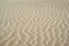 Ripples in sand dunes Stock Images