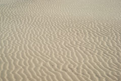 Ripples in sand dunes Royalty Free Stock Image