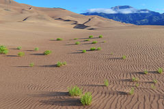 Ripples in Sand Dunes and Mountains Royalty Free Stock Images