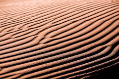 Ripples on the sand II. Beautiful ripples on the sand whim of the wind Royalty Free Stock Images
