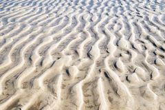 Ripples in the sand at low tide. Ripples in the sand at the bottom of Delware Bay at low tide Royalty Free Stock Photos