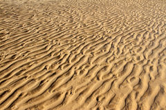 Ripples on the sand Royalty Free Stock Image