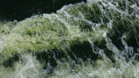 Ripples. Sea plankton driftin seainThailand stock images