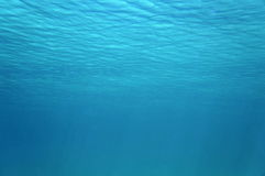 Ripples of underwater surface in the Caribbean sea Royalty Free Stock Images