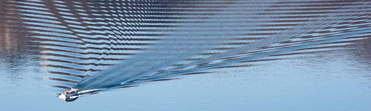 Ripples in water stock image