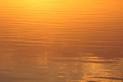 Ripples on Water Lit by Sun. Ripples on the yellow water surface lit by the rising sun Stock Images