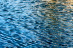 Ripples on water surface. Wind blown water surface ripples Royalty Free Stock Photos