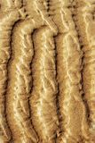 Sand ripples on the beach royalty free stock photo