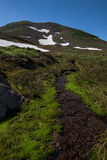 Rippling creek on the slopes of Mutnovsky volcano Royalty Free Stock Photos