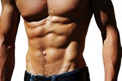 Rippling male torso Stock Photo