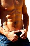Rippling male torso Royalty Free Stock Photo