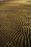 Rippling sands Royalty Free Stock Photography