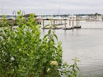Over the water on a cloudy day. Rippling water on a cloudy summer day with boats in background royalty free stock photos