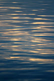 Rippling water surface Royalty Free Stock Photos