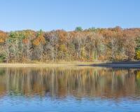 Ripply odbicie jesieni sceneria Fotografia Royalty Free