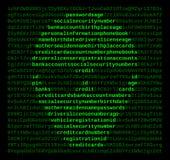 Riprogrammatore di crimine di Cyber del calcolatore Fotografia Stock