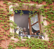 Window with ivy Stock Images