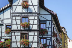 Riquewihr Frankrike, fönster med blommor Royaltyfri Bild