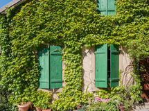 Riquewihr. Overgrown house facade in Riquewihr, a town in Alsace, France Royalty Free Stock Images