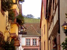 Riquewihr street and vineyard. Nice village in the wine route, ALsace royalty free stock image