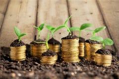 riqueza Imagem de Stock Royalty Free
