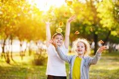Rir crianças com t-shirt da cor joga as folhas amarelas no aut imagens de stock royalty free