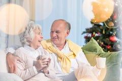 Rire aîné de couples Photos libres de droits