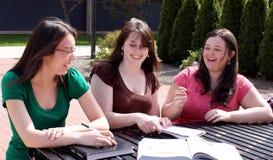 Rire d'étudiants universitaires images libres de droits