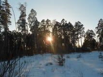 Riroda Rusland is behandeld met sneeuw in de dag Royalty-vrije Stock Afbeelding
