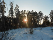 Riroda Russia è coperto di neve di giorno Immagine Stock Libera da Diritti